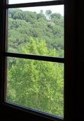 Windowviewcropped