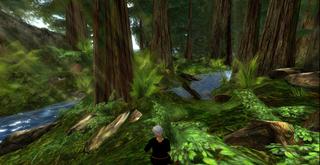 Chakryn_forest_001