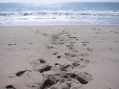 zuma_beach_36